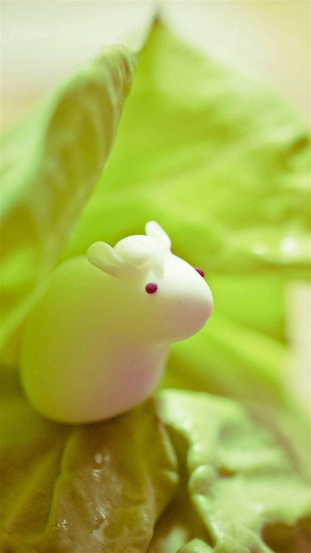 可爱静物兔子手机壁纸6
